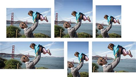 Picture editing software   Adobe Photoshop Elements 14