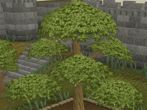 How to Farm Yew Trees in RuneScape: 8 Steps (with Pictures)