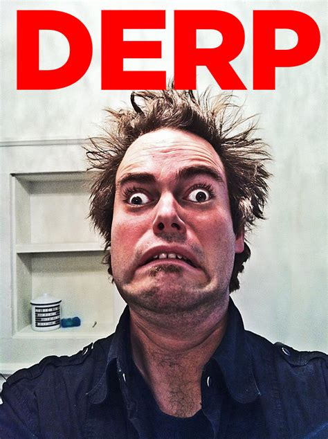 WHAT THE DERP? | DERP | Know Your Meme