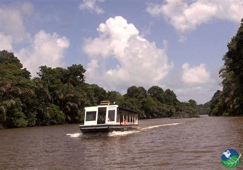 Tortuguero National Park, Costa Rica - Canals and Nesting
